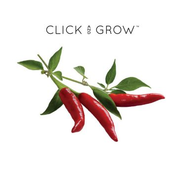 kapsulki-click-and-grow-nasiona-papryczka-chili